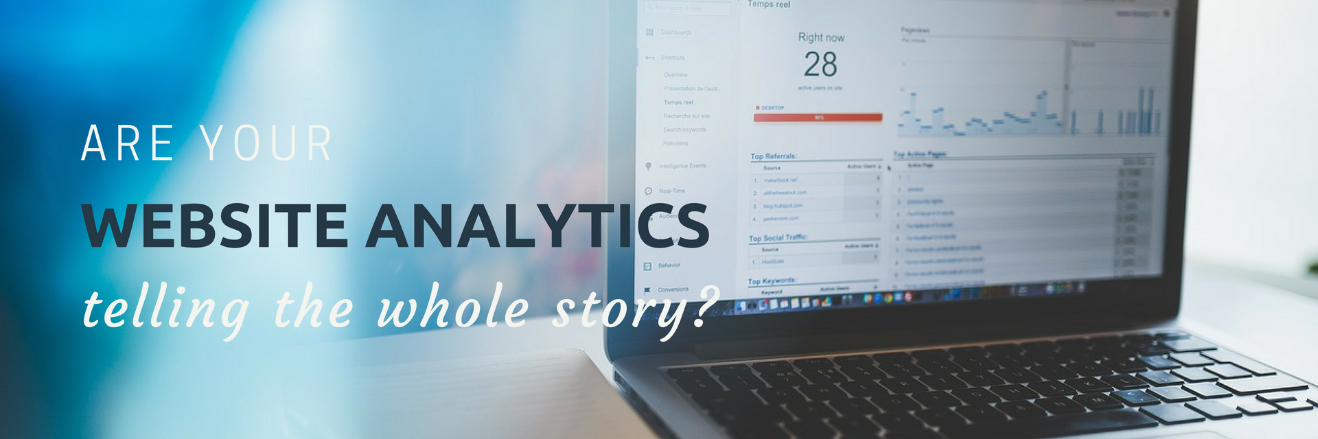 website analytics tell whole story